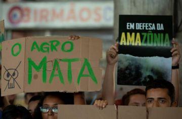Juez peruano señala a Bolsonaro como autor intelectual de incendios