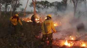Voluntarios denuncian que colonos reactivan incendios