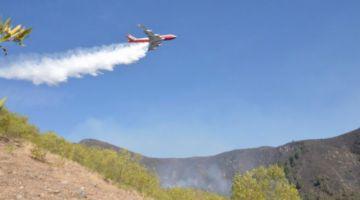 Policía aprehende al supuesto autor del incendio en Tarija