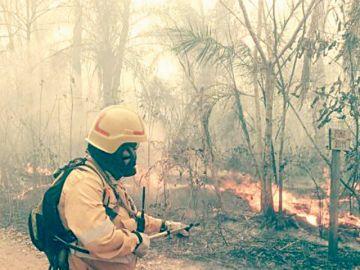 Chiquitanía: El fuego no cede  y Conade anuncia juicio a Evo