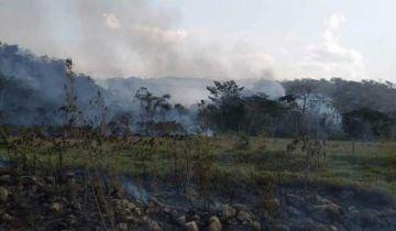 Identifican a chaqueos como la causa del incendio en el Madidi
