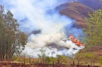 Tarija: Alcaldía despliega a 200 personas para controlar incendio