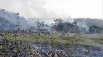 Incendios: El núcleo  del Madidi en riesgo