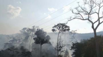 El fuego en el Parque Madidi fue sofocado tras consumir 300 hectáreas