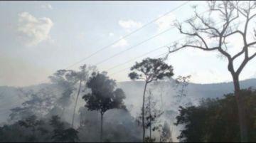 Sofocan incendio en  Madidi tras pérdida  de 300 hectáreas