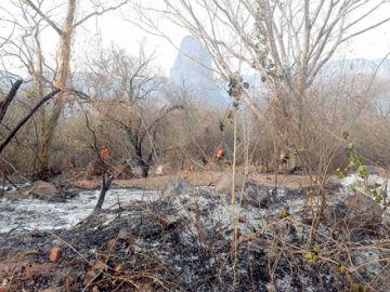Incendios: El Gobierno  ya erogó $us 23 millones