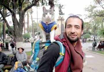 """""""Adopta"""" el mensaje del gato mochilero"""