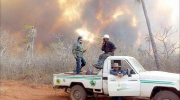 FFAA aseguran que se apagó más de la mitad de incendios