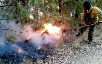Incendio en el Tunari preocupa en la Llajta
