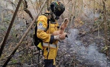 Identifican al bombero voluntario fallecido en el Tunari