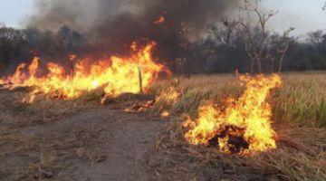 Diputados paraguayos piden resarcimiento de Bolivia por incendios en el Chaco