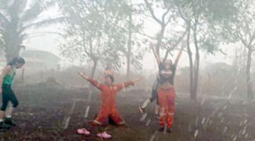 Chiquitanía: Lluvia siembra esperanzas