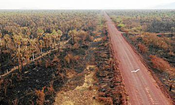 Lluvias sofocan últimos incendios: Chiquitanía