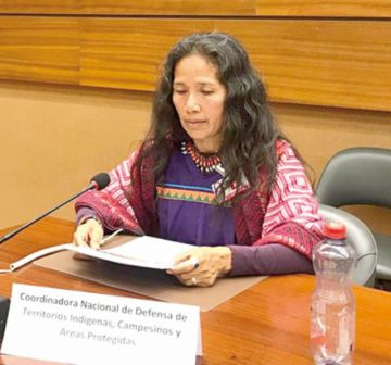 Indígenas denuncian a Evo ante la ONU por incendios