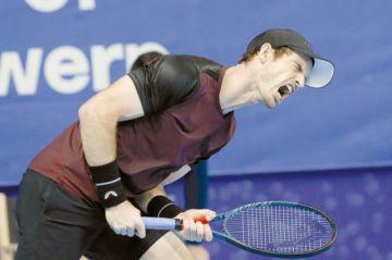 Murray vuelve a celebrar