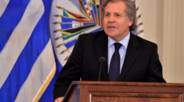 OEA auditará elección boliviana y su conclusión serán vinculante