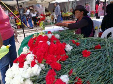 La floricultura, un brazo para la economía del D-8