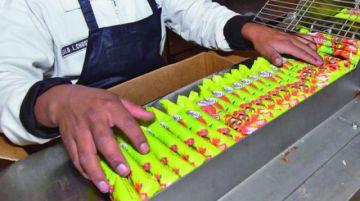 YPFB decide cortar suministro a industriales por la no operación del gasoducto Carrasco