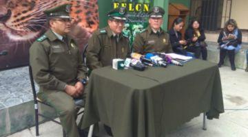Exdirector de la Felcn: 50 cocaleros afines a Evo son investigados por narcotráfico