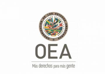 """OEA: Sin """"aumento inexplicable"""" de votos, el MAS no habría sacado 10% a CC"""