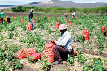 Productores de cebolla bloquean punto limítrofe entre Tarija y Chuquisaca