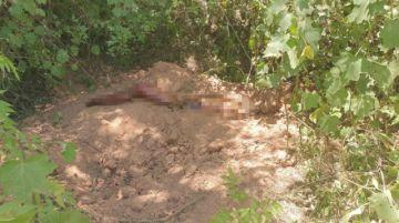 Joven de 17 años asesina a su hermano mayor en Muyupampa