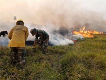 Incendios: Gobierno refuerza ataque por tierra ante la imposibilidad de hacerlo por aire