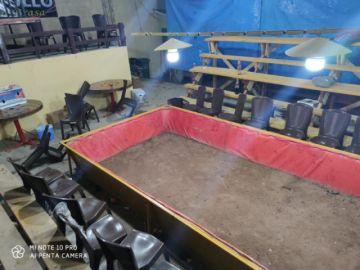 Sucre: Intervienen un restaurante donde se organizaban peleas de gallos con más de 70 personas