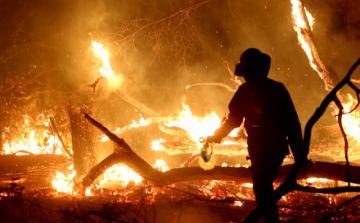 Bolivia: Los incendios forestales consumieron ya 2,3 millones de hectáreas