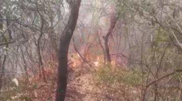 En Huacaya muere el ganado por la sequía y los incendios amenazan al municipio