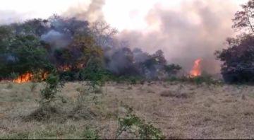 Ministro Arias: Áñez anunciará ayuda aérea internacional para combatir incendios