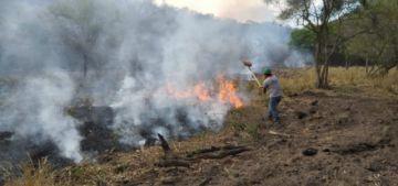 Ministro López: Todos los incendios forestales fueron provocados