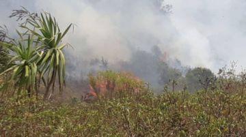 El Chaco clama por ayuda aérea para aplacar el fuego; Ministro dice que van helicópteros