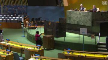 Bolivia entra al Consejo de DDHH de la ONU; presencia de Cuba, Rusia y China genera polémica