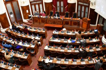 La Cámara de Diputados tratará este miércoles la ley que condona la deuda de Elapas