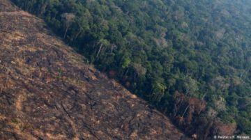 Diputados brasileños aprueban polémica flexibilización de reglas ambientales