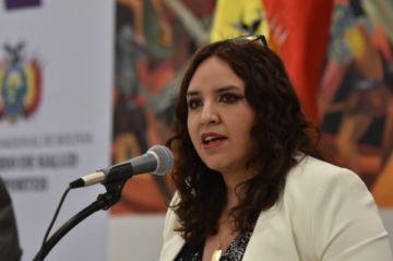 """Viceministra Castro afirma que """"ya estaríamos entrando a una meseta"""" de contagios"""