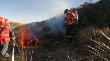 Al menos diez hectáreas afectadas por un incendio forestal en Llinfi