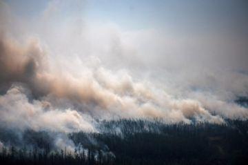 Voluntarios apoyan a los bomberos a hacer frente de los incendios forestales en Siberia