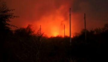 Incendios forestales ya afectaron 147.254 hectáreas en Santa Cruz