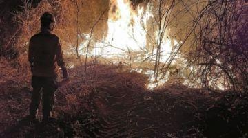 ABT impulsa 40 procesos administrativos y cuatro juicios penales por los incendios en Santa Cruz