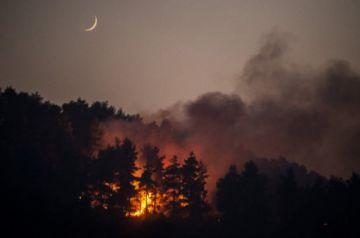 Fuerza del fuego mengua en Grecia, donde ya han ardido 100 mil hectáreas en dos semanas