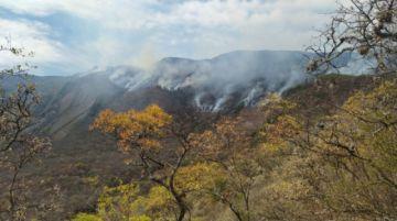 Voluntarios se suman a la lucha contra el fuego en El Palmar: ¿Cómo se puede ayudar?