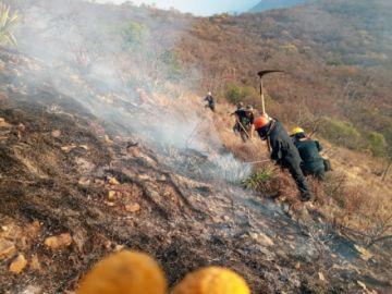 Gobernación promulgará un decreto de emergencia por incendio en El Palmar