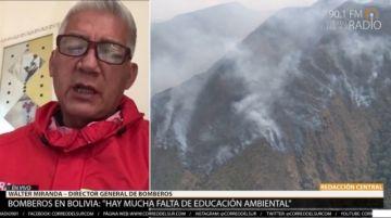 """""""Hay mucha falta de educación ambiental"""": Bomberos atiende incendios forestales en dos regiones"""