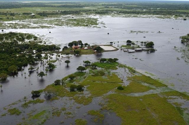 Desastres afectan a 84 municipios y causan pérdidas a más de 22.000 hectáreas