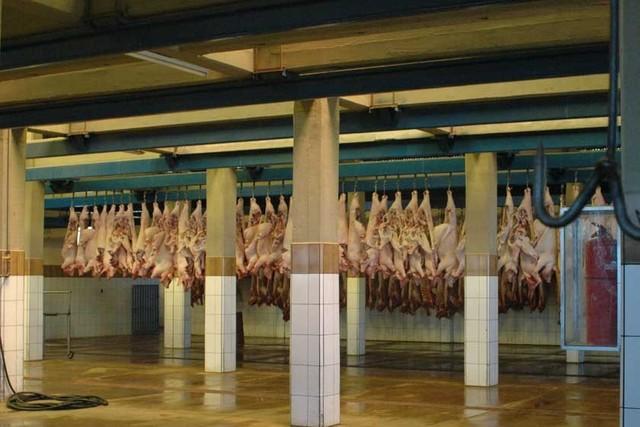 Coprocach define nuevos precios de carne de cerdo