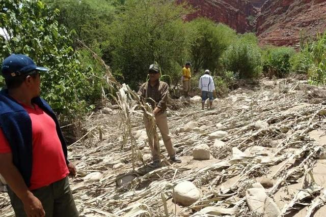 Desborde de pequeños ríos  arrasa producción agrícola