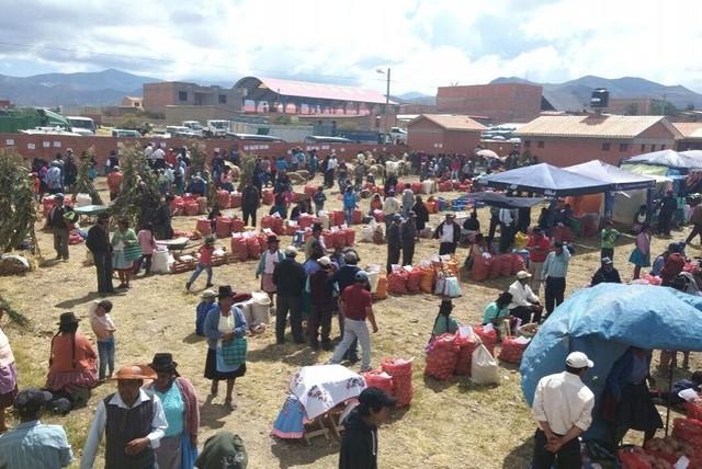 Feria Agropecuaria reunió a más de 400 expositores de cuatro municipios en Villa Charcas