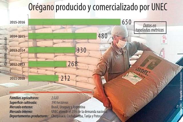 Bolivia, segundo exportador de orégano en Sudamérica